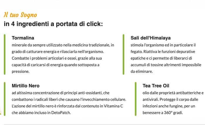 Ingredienti di DetoPatch